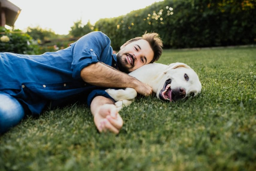 Secure Your Pet's Future WithPet Insurance And Relieve Yourself From Stress