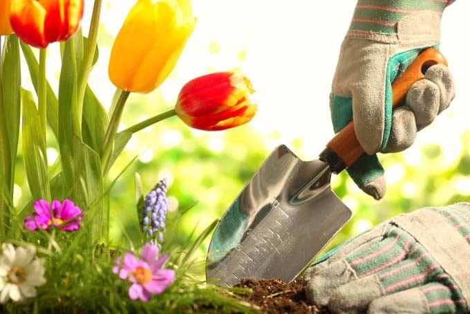 Handy Gardening Tools for Building an Outstanding Garden